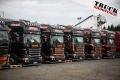 Show Truck TGP--8614