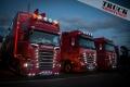 Show Truck TGP--9103