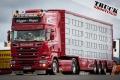 Show Truck TGP--9236