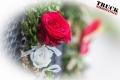 ts.com Hochzeit Patricia Robert--5604