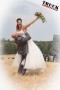 ts.com Hochzeit Patricia Robert--5856