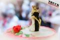 ts.com Hochzeit Patricia Robert--6157