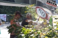 ts.com Knoll Golling--7720